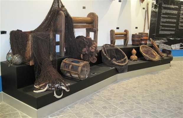 Musée de la mer de Guarda