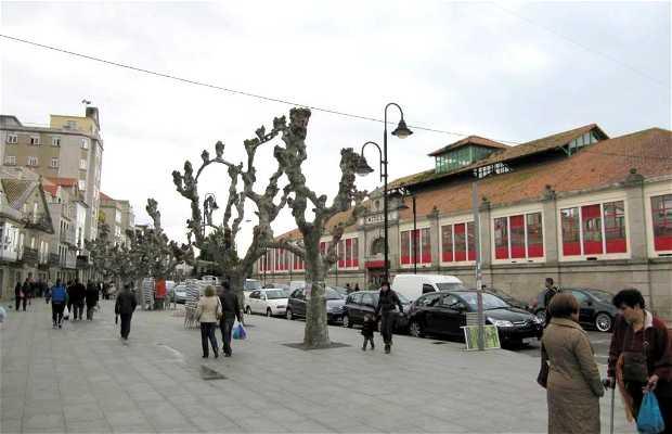 Paseo de Castelao