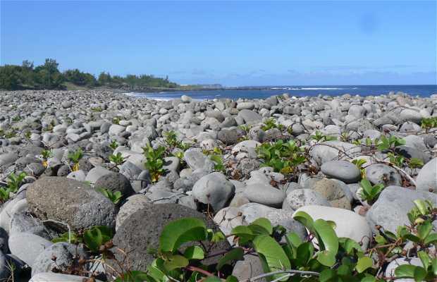 Playa de la ravine des avirons
