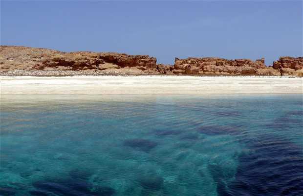 îles Daymanyat