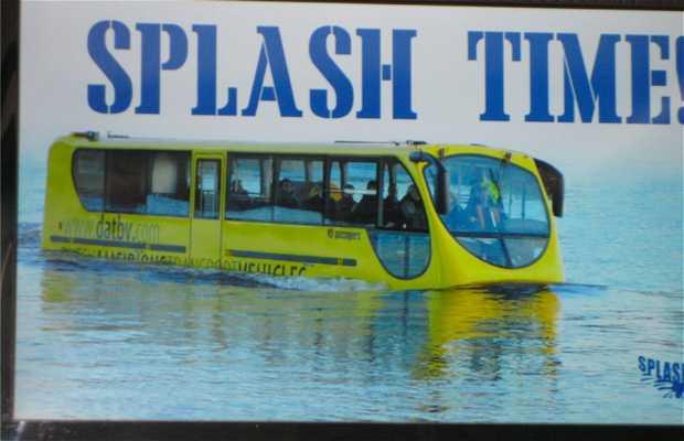 Splash Tours