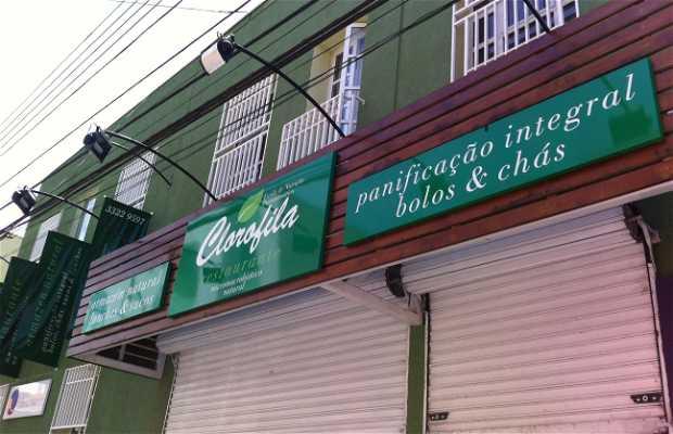 Restaurante Clorofila