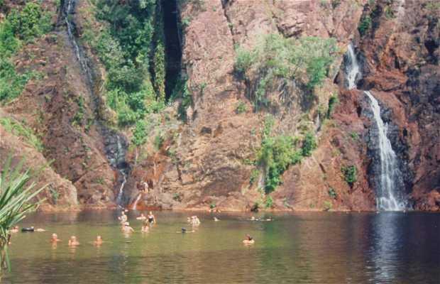 Chutes d'eau Wangi