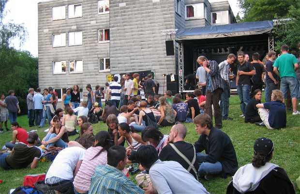 Allmandringfest