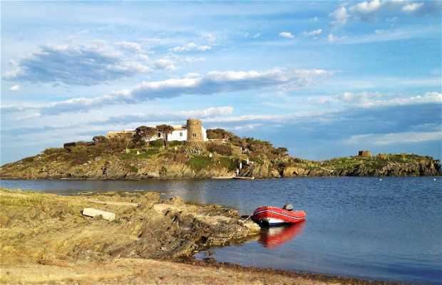 Isla de S'arenella