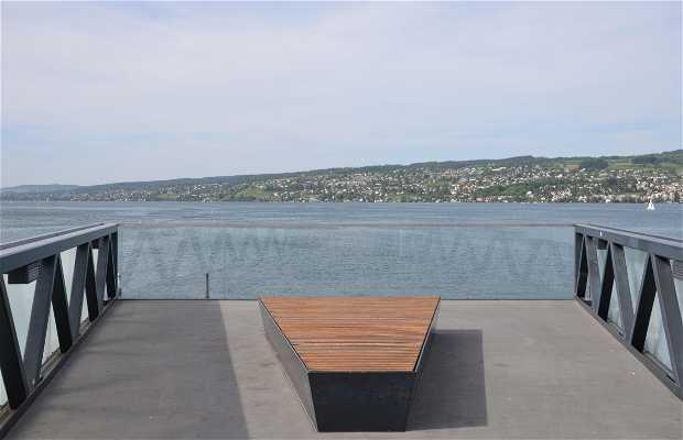 Bridge Viewpoint in the lake