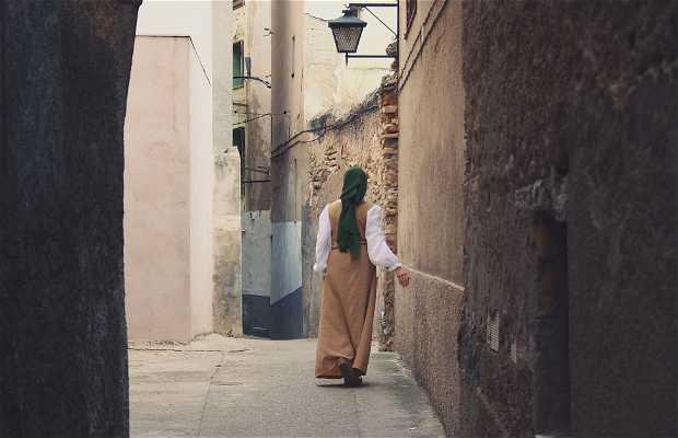Juderia de Tortosa