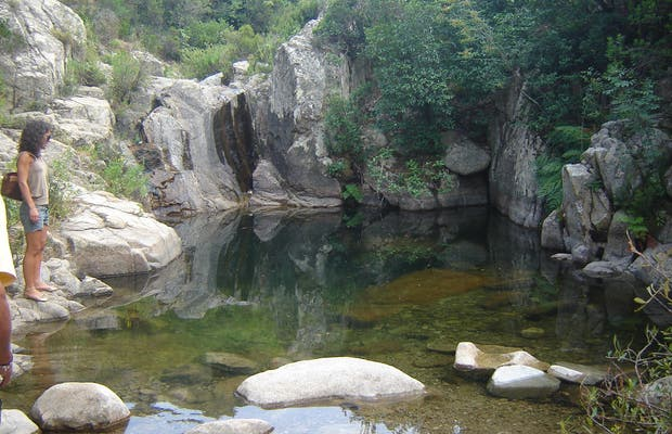 Pools in Tempio Forest