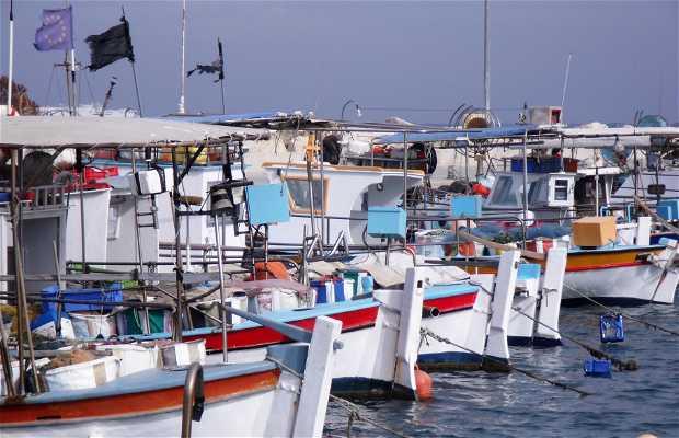 Puerto Pesquero Larnaka