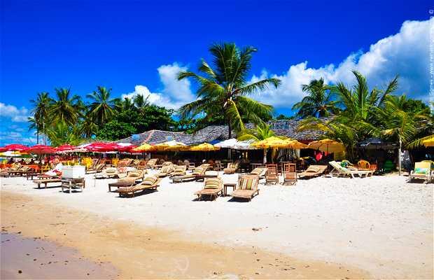 Playa de los Coqueiros