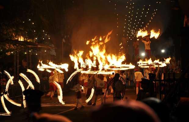 Festival Esala Perahera