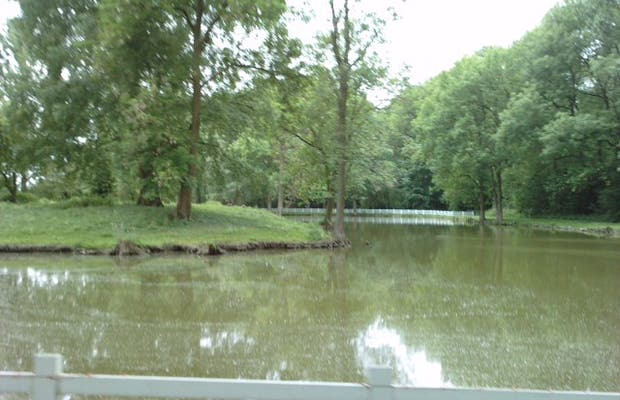 La Chanterelle park