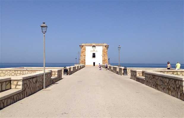Torre di Ligny - Museo de Prehistoria y Arqueología Marina
