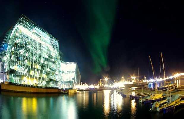 Harpa Concert Hall de Reykjavík
