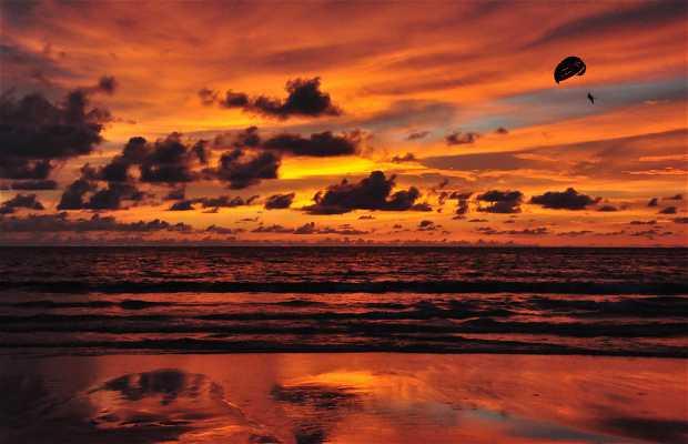 Pathong Beach