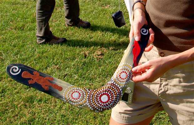 Demostración de Boomerang