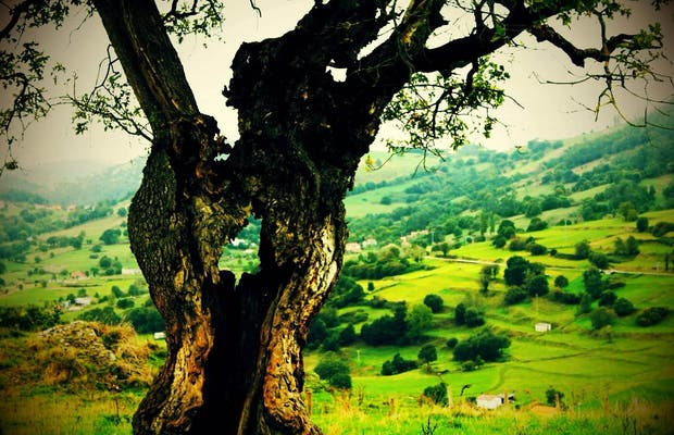 Cabillas Mount