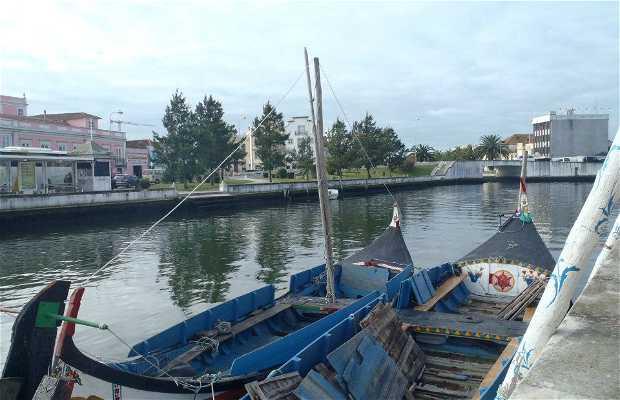 Eco ría: Excursiones por la Ría de Aveiro