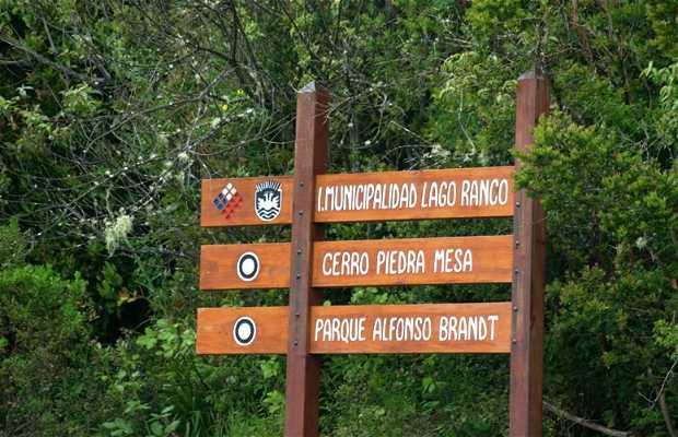 Parque Alfonso Brandt
