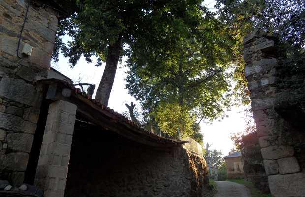 San Román de Sanabria