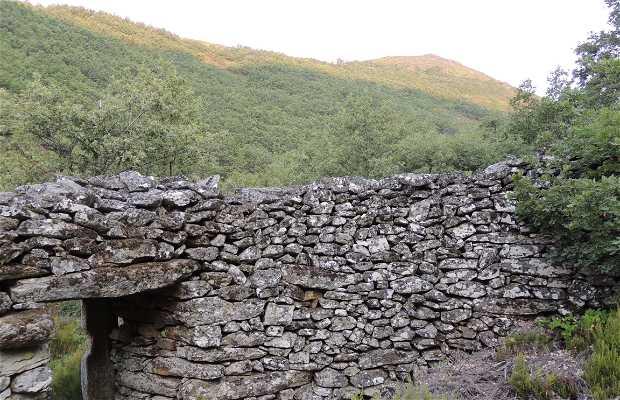 Culmeneiro de Faldriego