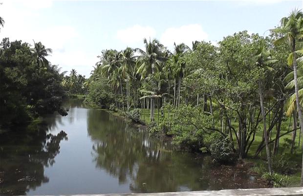 Kadathu