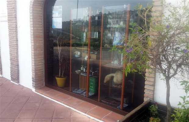 Oficina de turismo en c mpeta 1 opiniones y 4 fotos - Oficina de turismo ...