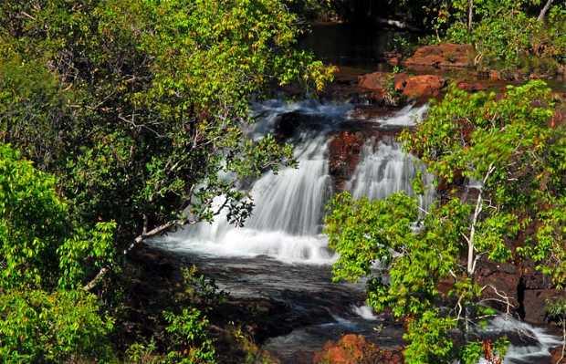 Chutes de Florence Falls
