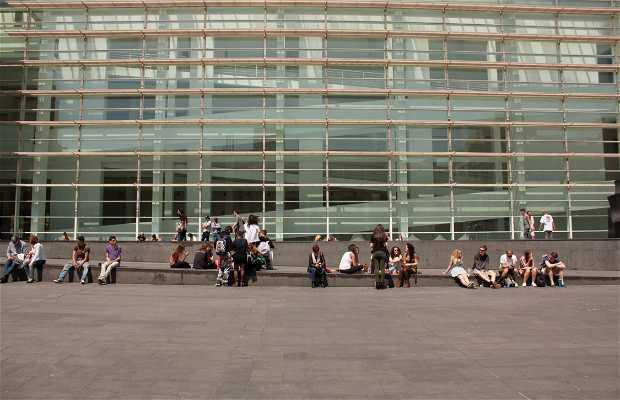 MACBA - Museo d'Arte Contemporanea