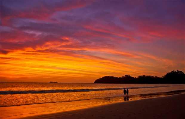 Playas del Pacífico de Costa Rica