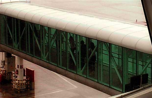 Aeroporto Internacional de Maceió - Zumbi dos Palmares