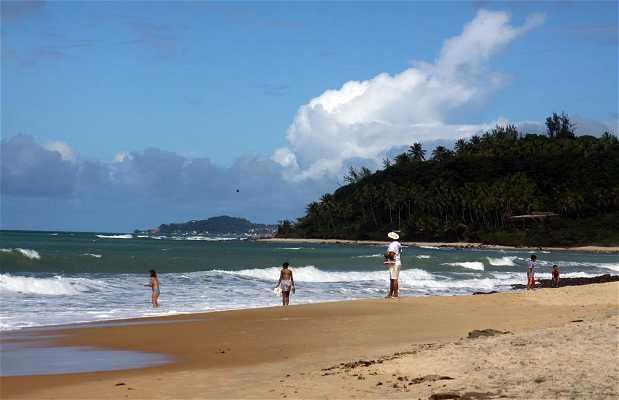 Plage de Tibau do Sul