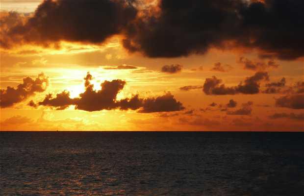 Bahia Roja