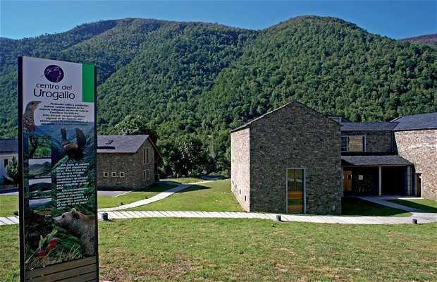 Centro del Urogallo