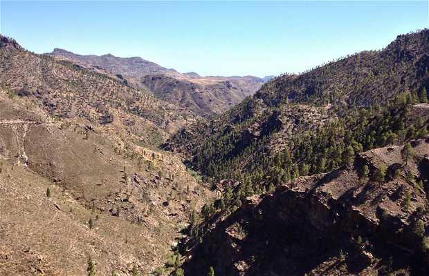 Tours en bicicleta por Gran Canaria