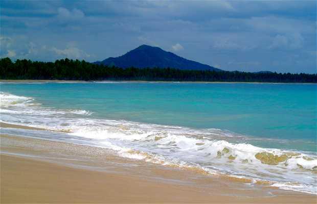 Playa Limón