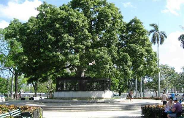 Parque de la Fraternidad Americana