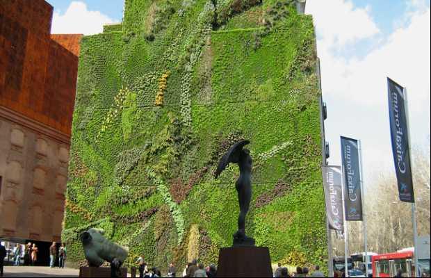 Caixaforum hanging garden