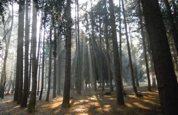 Parque Alto Milanese