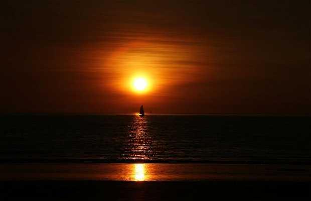 Puesta de Sol en Darwin