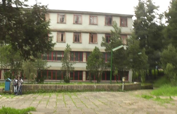 University College of Social Sciences