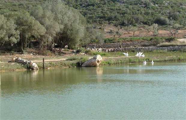 Ruta a caballo en la Serra del Montsià,Terres de l'ebre