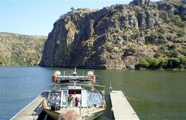 Environmental Cruise in Catamaran along Duero
