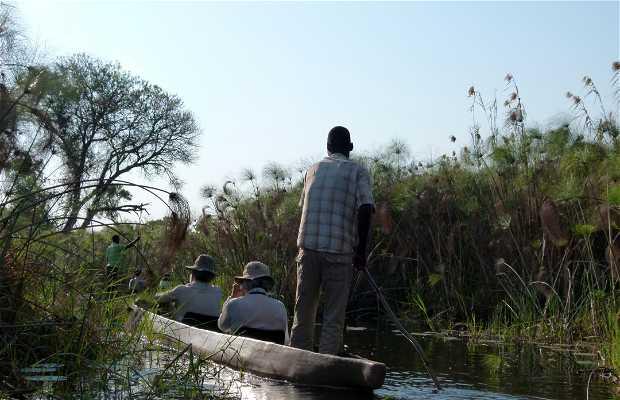 El Humedal del Delta del Okavango