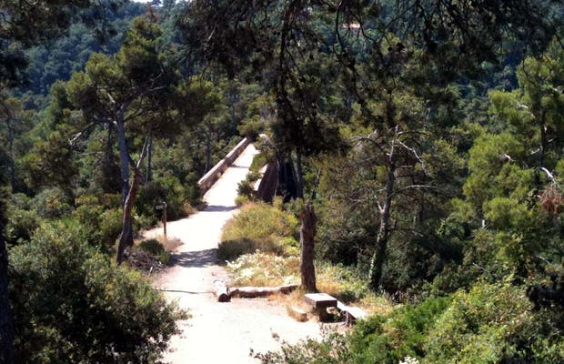 Viaducto de Can Ribes