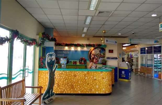 Aruba Cruise Terminal