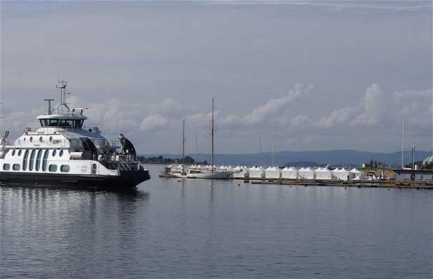 Mini crucero Fiordo Oslo