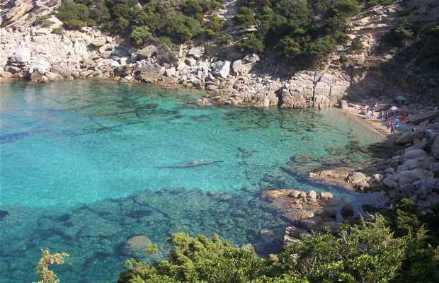 Spinosa Cove