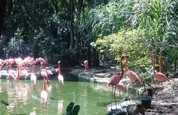 Parque Zoologico Santa Fe