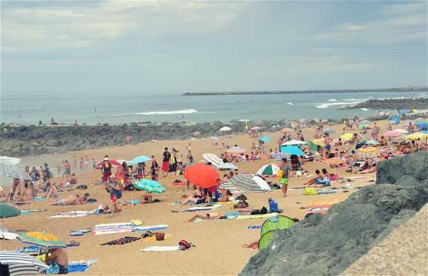 Club beach